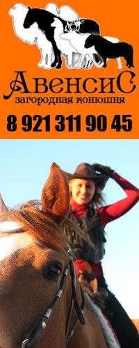 Авенсис, конный клуб