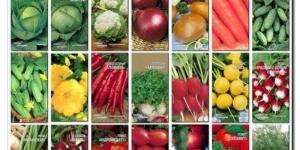 Хранение семян овощных культур