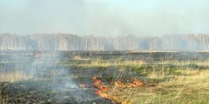 Все пожары в 47-м регионе потушены