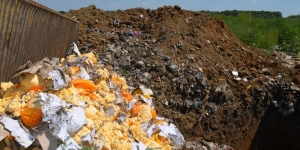 В Ленобласти уничтожено более 17 тонн