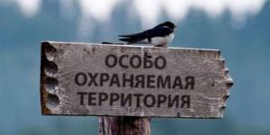 «Колтушские высоты» – новый памятник природы в Ленинградской области