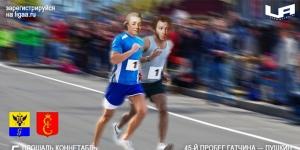 Традиционный 45-й легкоатлетический пробег «Гатчина-Пушкин»