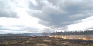 1116 раз пожарные выезжали на тушение пала травы