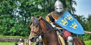 Фестиваль «Иоаннов День или Рыцари Приората» 2014