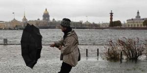 В Ленинградской области 29 октября ожидается усиление ветра