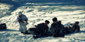 Бои за Красногвардейск. Январь 1944