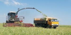 Федеральные миллионы — фермерам Ленинградской области